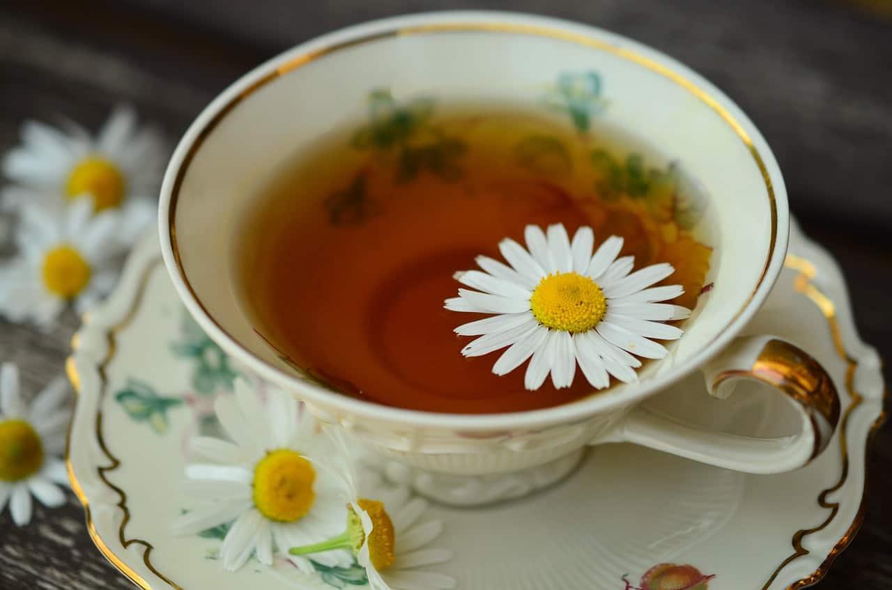 Rimedi naturali: storia e legame con la medicina tradizionale cinese